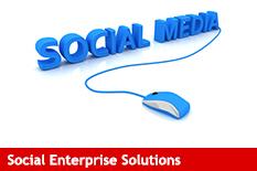 Salesforce Social Enterprise Solutions
